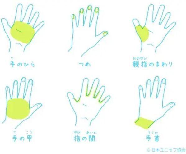 ユニセフ 手洗い 方法