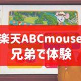 楽天ABCマウス 体験 口コミ 兄弟